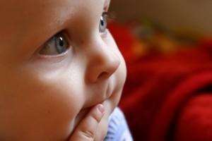Bebés comiendo y experimentando…